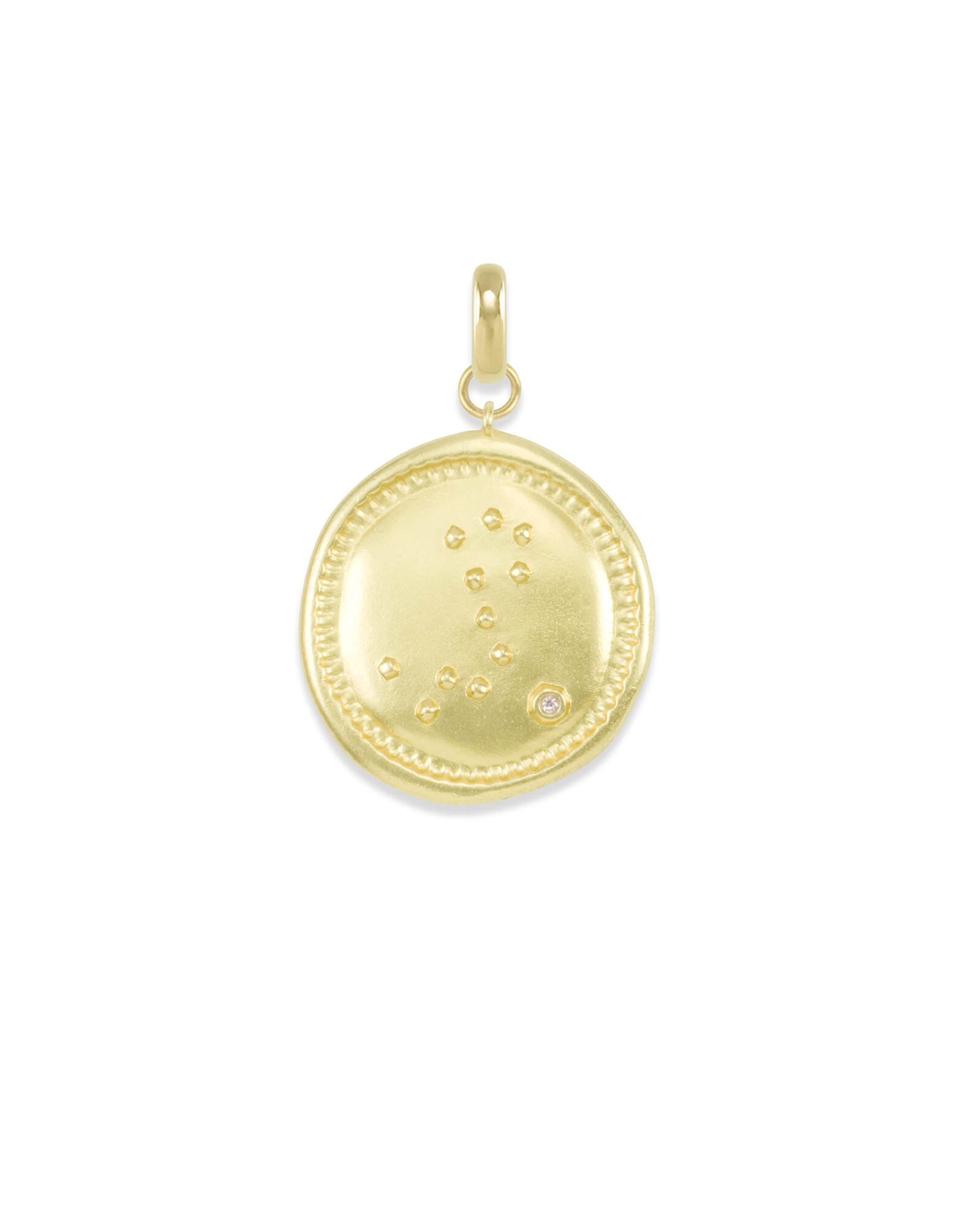 Pisces Large Coin Charm