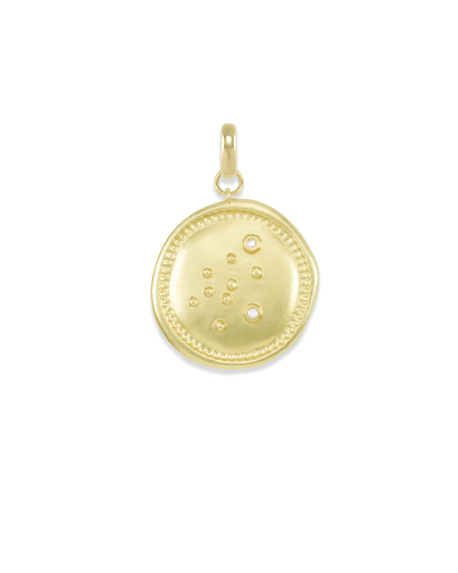 Aquarius Large Coin Charm