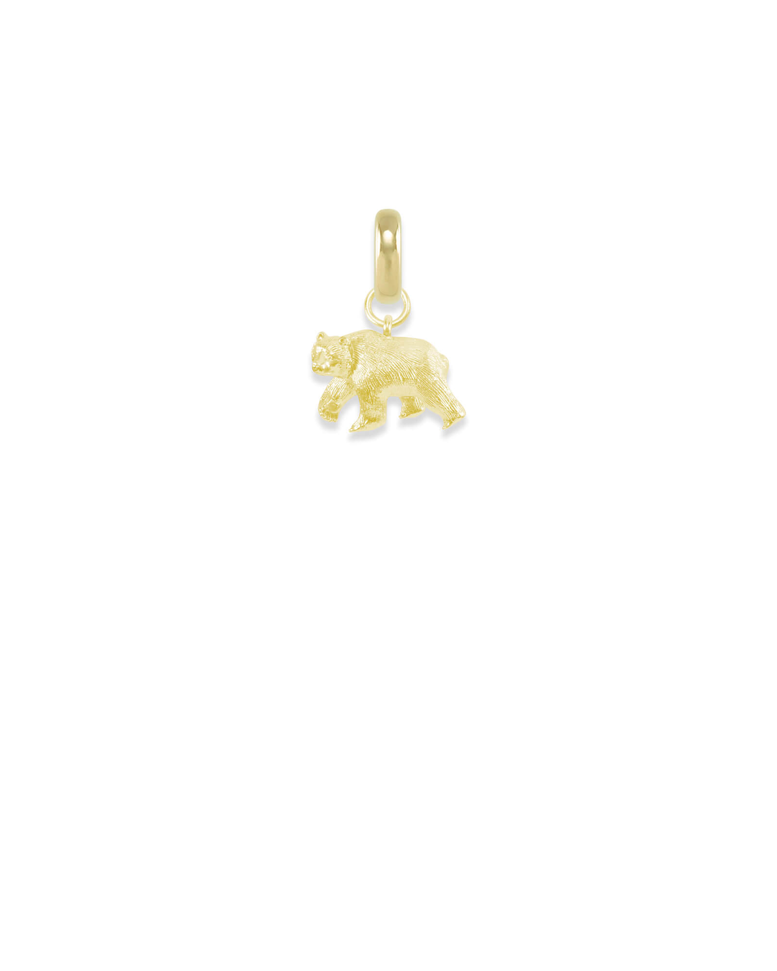 Colorado Black Bear Charm in Gold